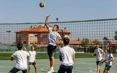 ELIS Murcia, cantera de deportistas: fichajes en clubes de Primera División y títulos en campeonatos de primer nivel